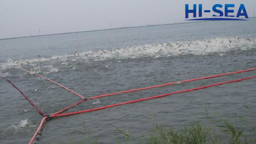 Inflatable Lift Net for Fishing