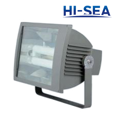 Water-proof Dust-proof Corrosion-proof Flood Electrodeless Light